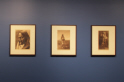 Photograph of the exhibition: Edward Curtis - Beyond Measure